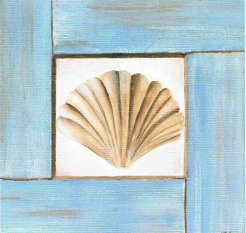 Reprodukce - tisk - Mušle 15x15cm - 0281A