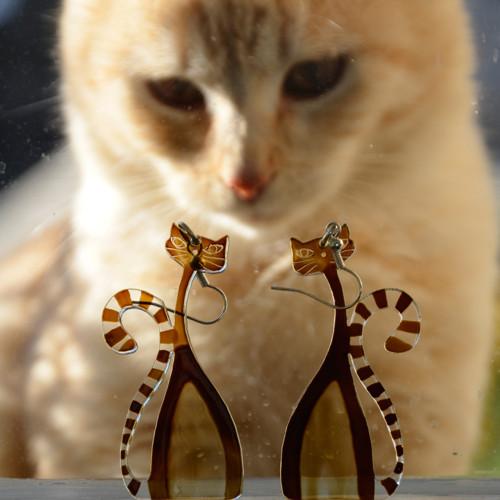 Kočky vás budou milovat
