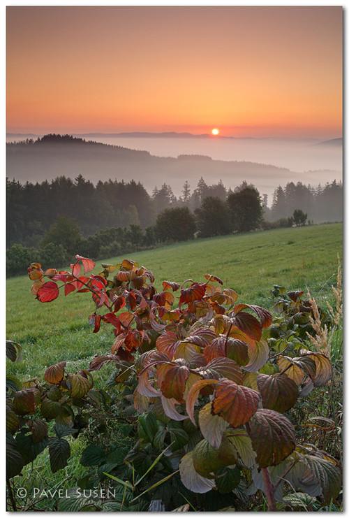 Podzimní sen