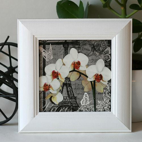 Paříž s orchideí