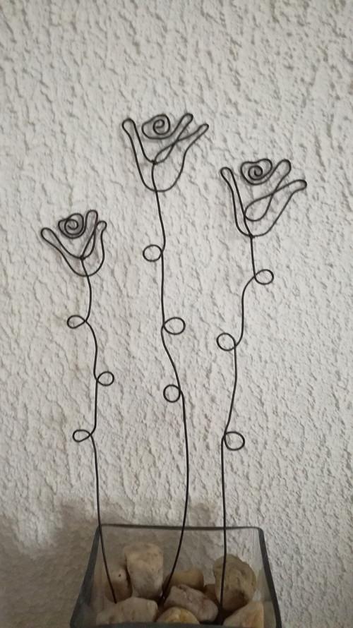 3 x růže