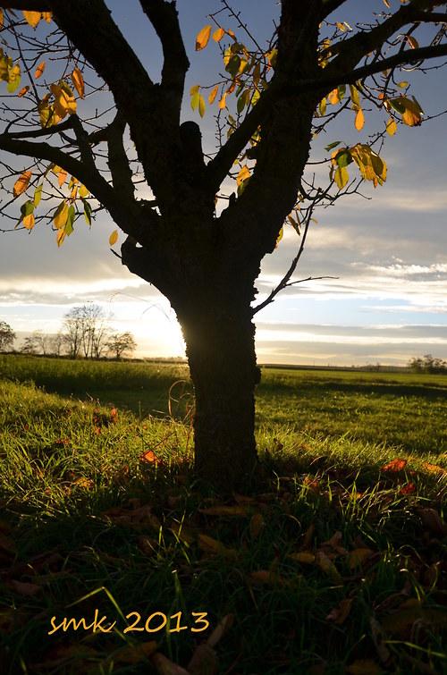Podzim II - autorská fotografie