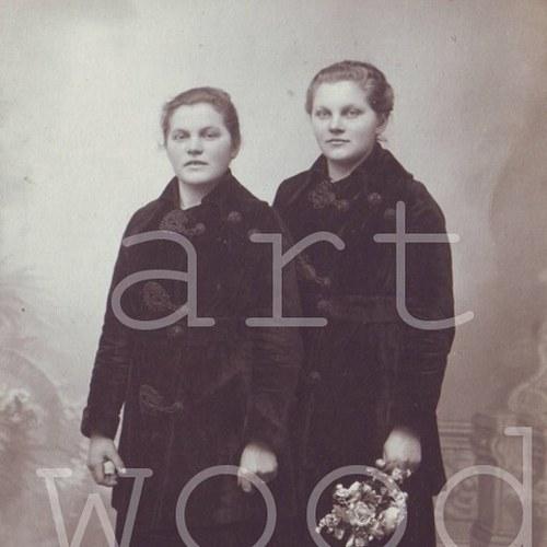 SESTRY - pohlednice č. 1115
