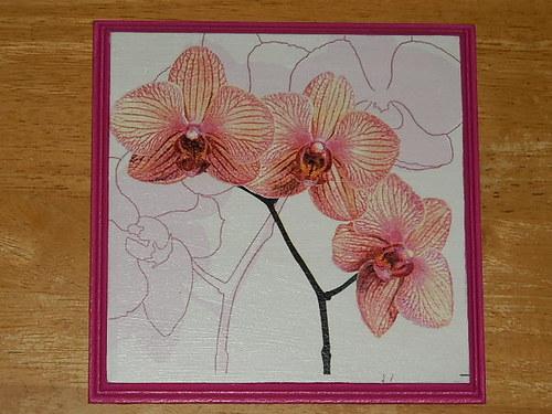 Obrázek na MDF destičce Orchidej IV