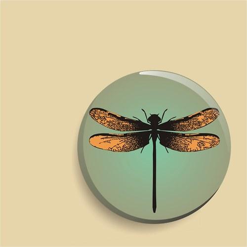 zrcátko - dragonfly