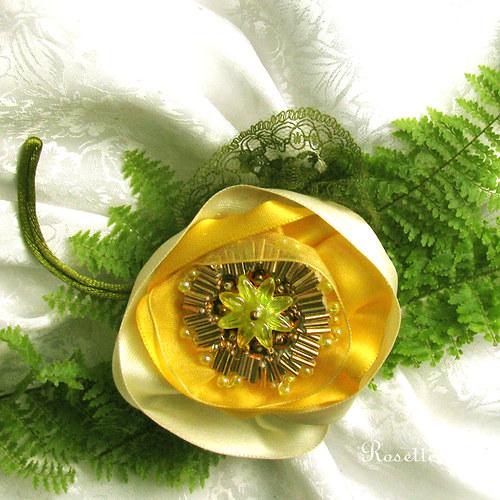 Pro Floru s náručí jarních květin ... - brož