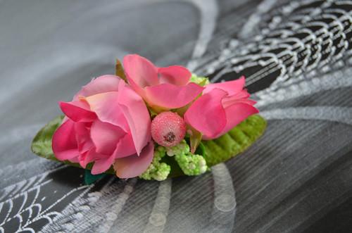 Růžová hortenzie  3 - pineta
