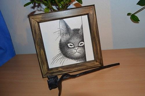 Obrázek - kočka
