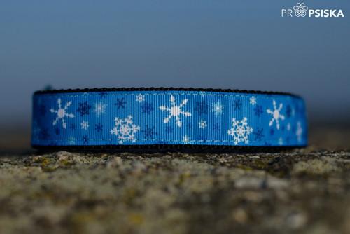 Obojek modrý vločkový, šířka 2,5 cm