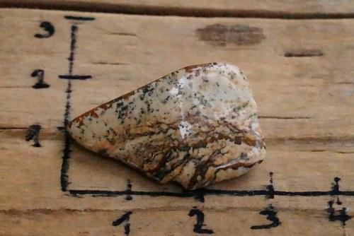 Jaspis obrázkový   B4744