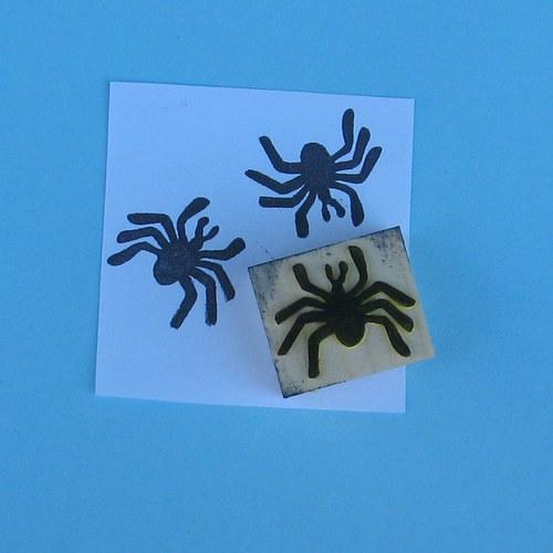 malý pavouk