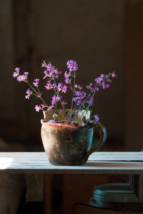 Pro vaše květiny