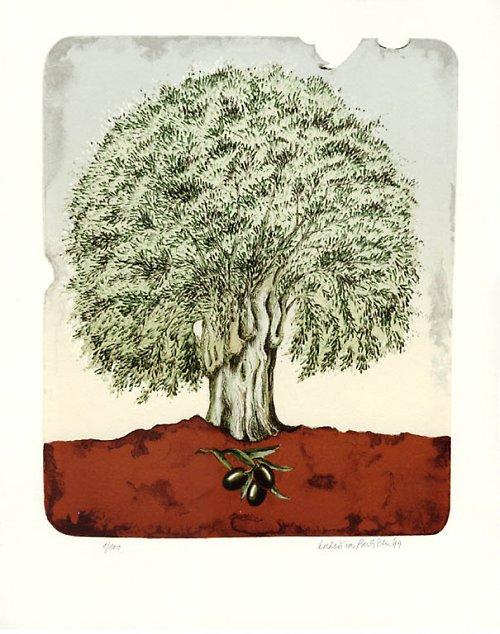 vzpomínka na Samos - olivovník II