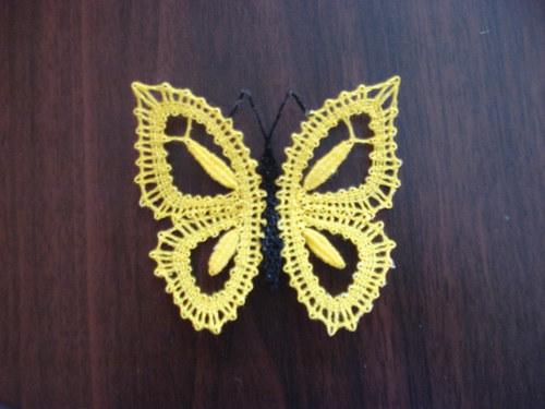 Motýl 4