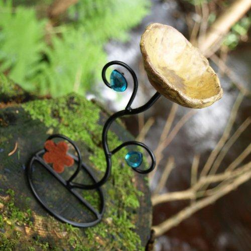 Svícen - lesní romance