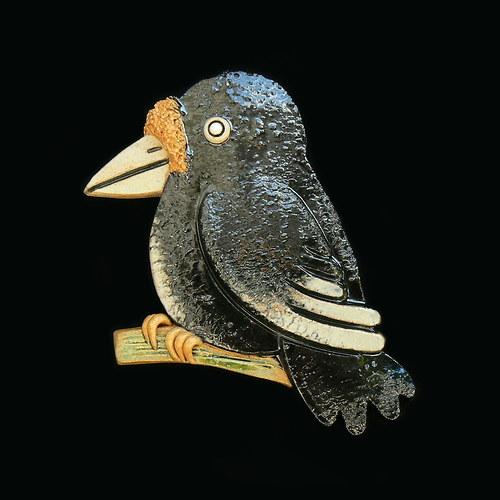 Ptáček vrána