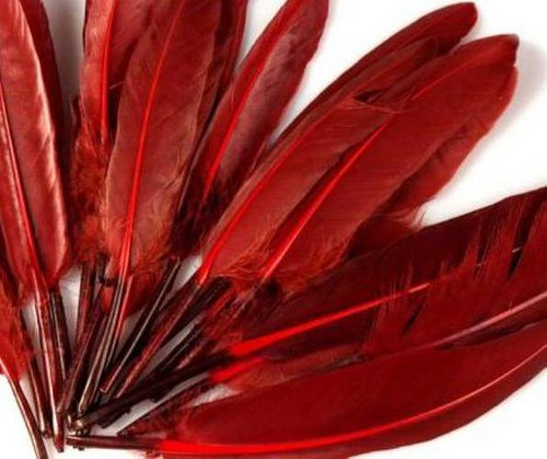 Tm.červené kachní peří, 10ks