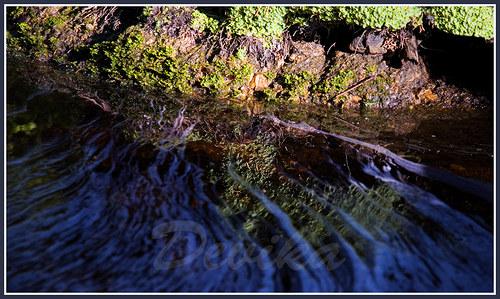 Voda má rozpuštěné vlasy -24x41