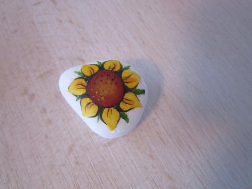 Malovaná slunečnice