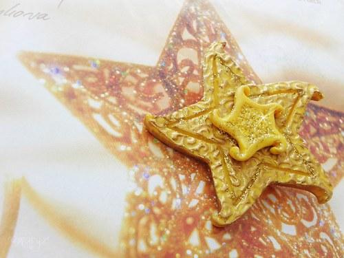 Vánoční hvězda-brož