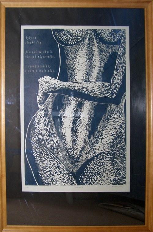 křivky poezie + dřevěný rám