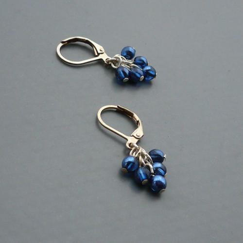 Modré s leskem - drobné hrozínkové náušnice