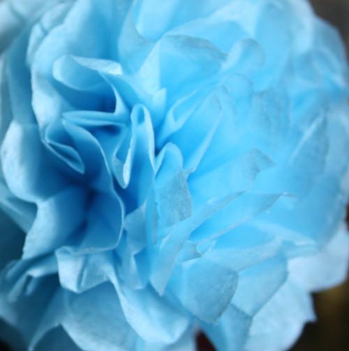 Nebeská modrá - pompom 22cm (M)