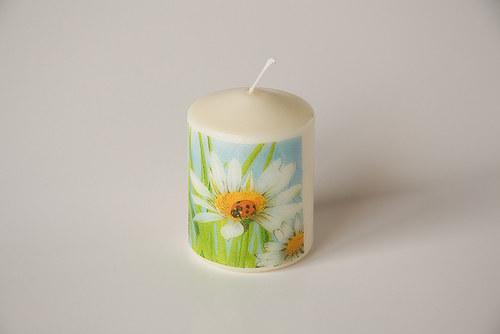 Svíčka s beruškou na kopretině