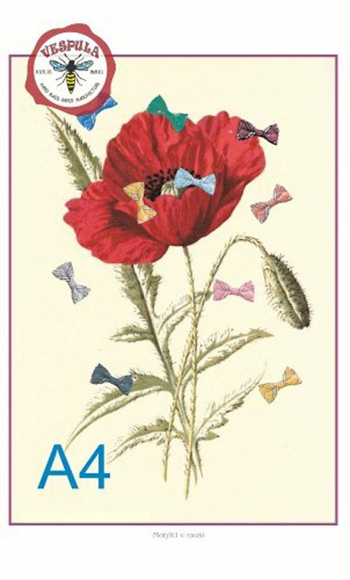Koláž Motýlci v rauši