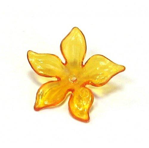 Květ velký oranžový průhledný