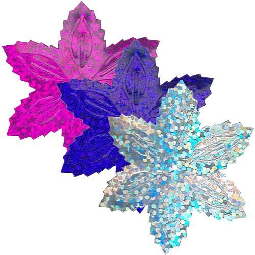 Flitry vánoční hvězdy 9g (3x3g)  =1433-184,228,177