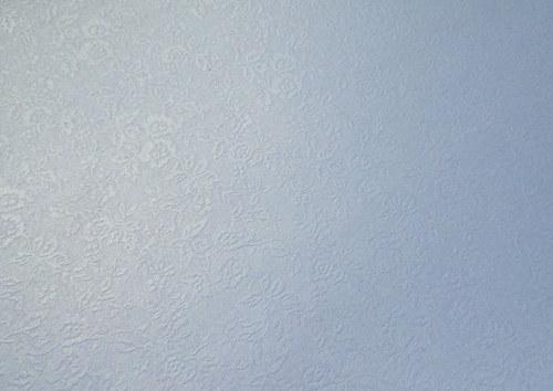 Reliéfní jednobarevný papír - růže bílá
