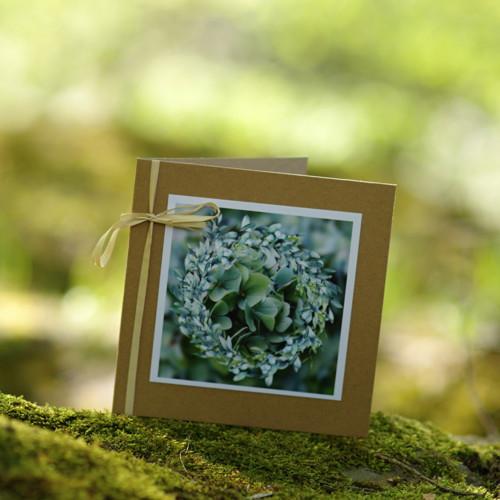 Hortenzie přírodní II - přání