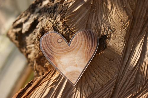 Srdíčko skoro dřevěné