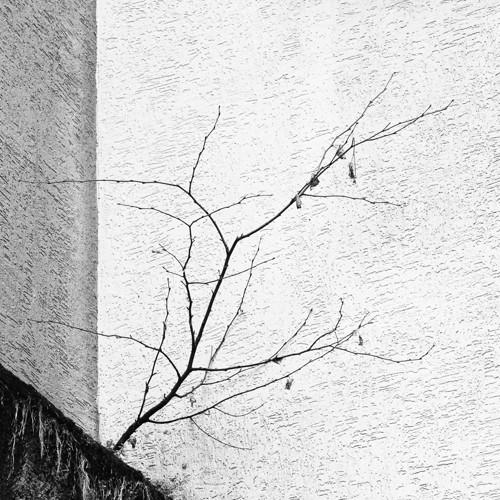 FOTO no.55