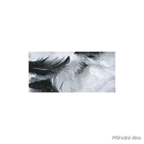 Směs barevných peří černo-bílá 10 g