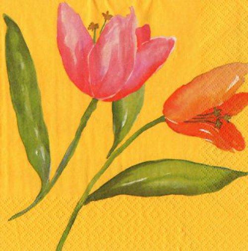 ubrousek - Tulipán