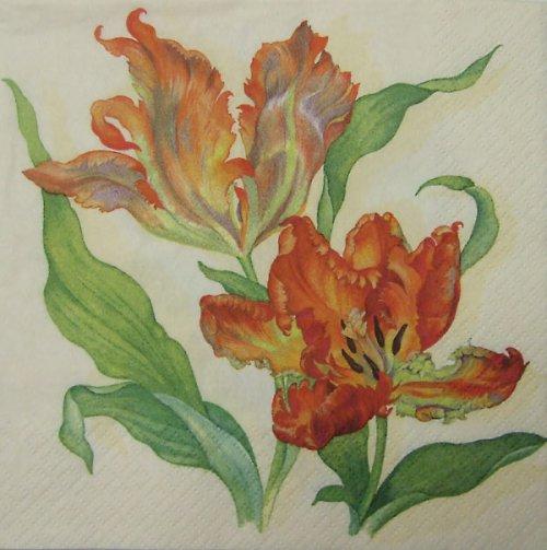 Ubrousek s třepenitými tulipány