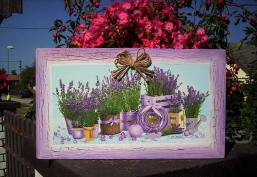 Maxi obrázek - Levandule v květináčích