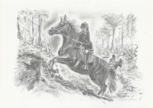 Na koňském hřbetě