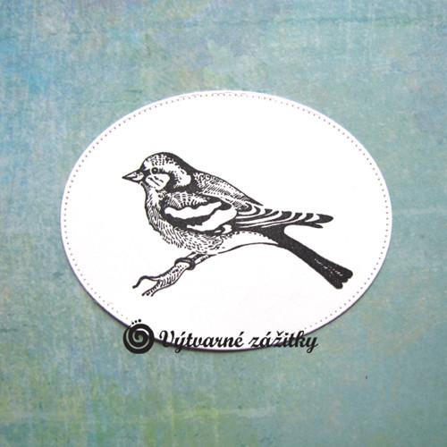 Ptáček v embosovaném oválu (inkoustový otisk)