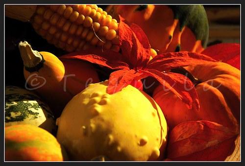 Zátiší s dary podzimu