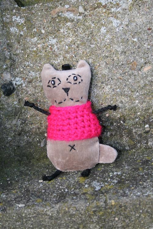 Kočička sametová v růžovém svetříku