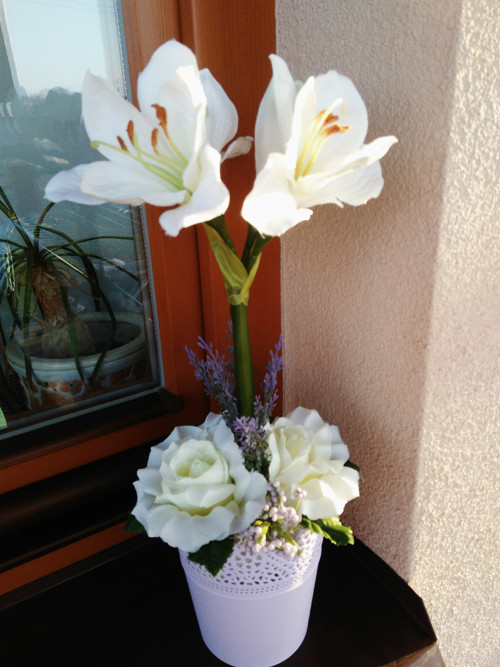 Celoroční trvanlivá dekorace a amaryllisem