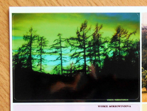 Fotonálepka: Toxický západ slunce