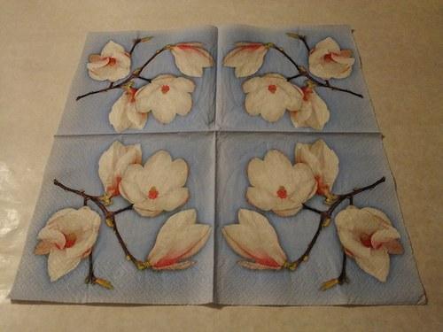 Květiny - magnolie 1.