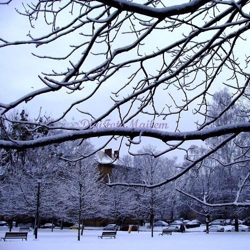 Zima v městském parku II