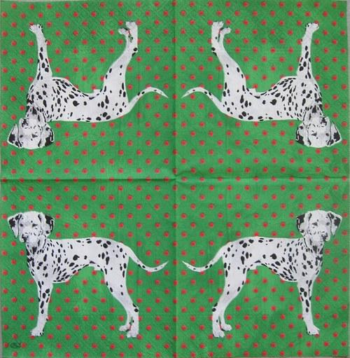 Dalmatin na zeleném S 52