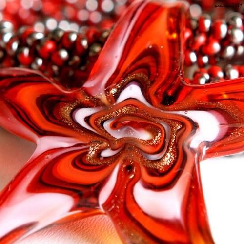 Šitá červená hvězdice