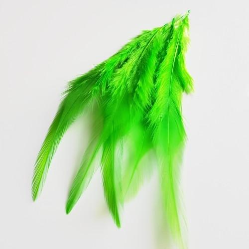 Peří, 10-15cm, zelená, 23ks